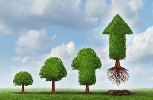 Fotolia_65413323_Subscription_Yearly_M-300x197